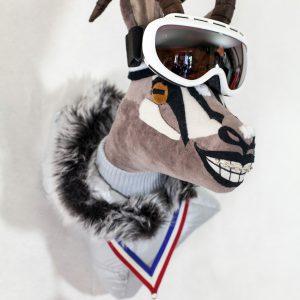 Trophée le chamois skieur