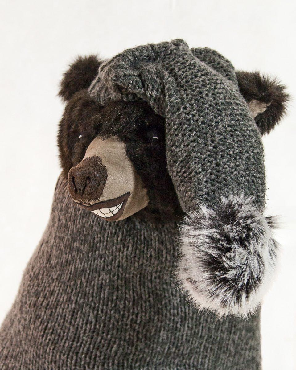 Le gentil grizzly